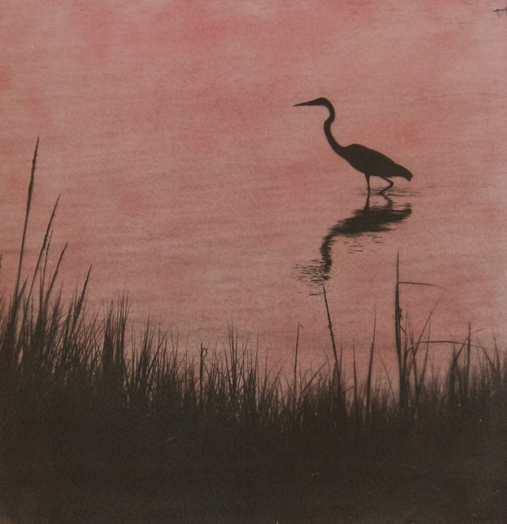 brown on pink picture of heron walking in water along shoreline