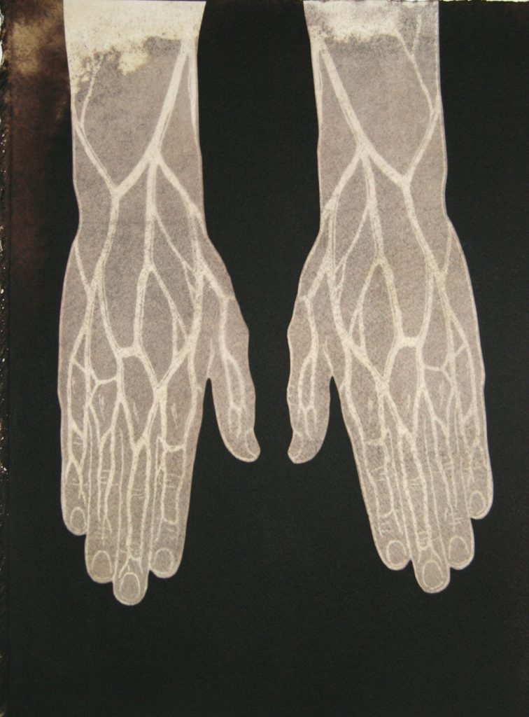 brown drawing of hands & wrists showing veins